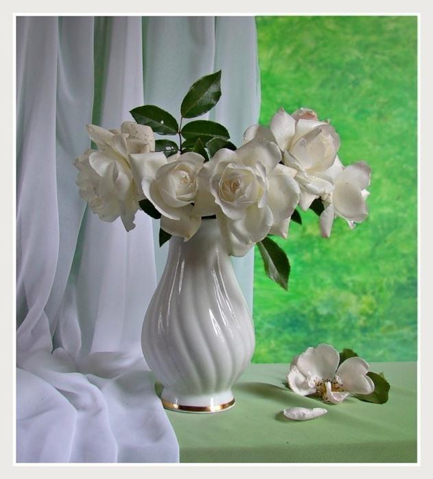 букет белых цветов фото