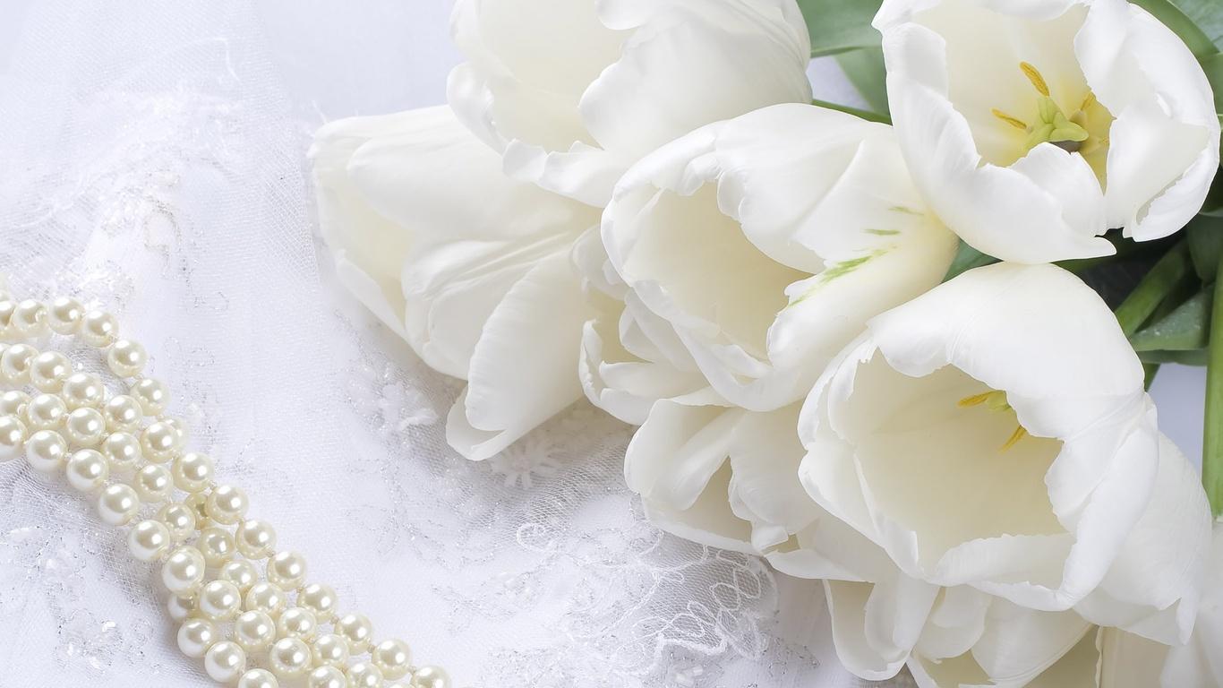 белые тюльпаны букет цветов