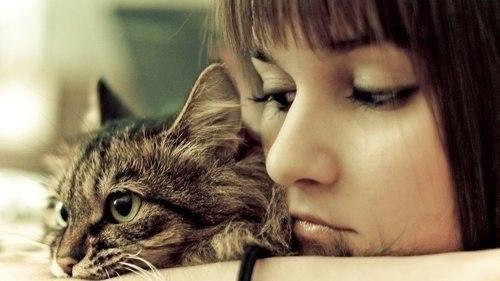 фото девушка с котенком