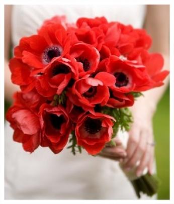 букет невесты из красных цветов