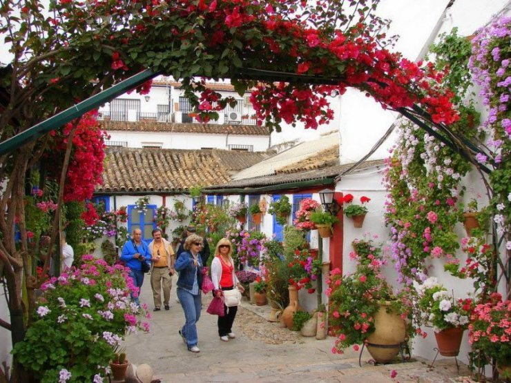 фестиваль живых цветов