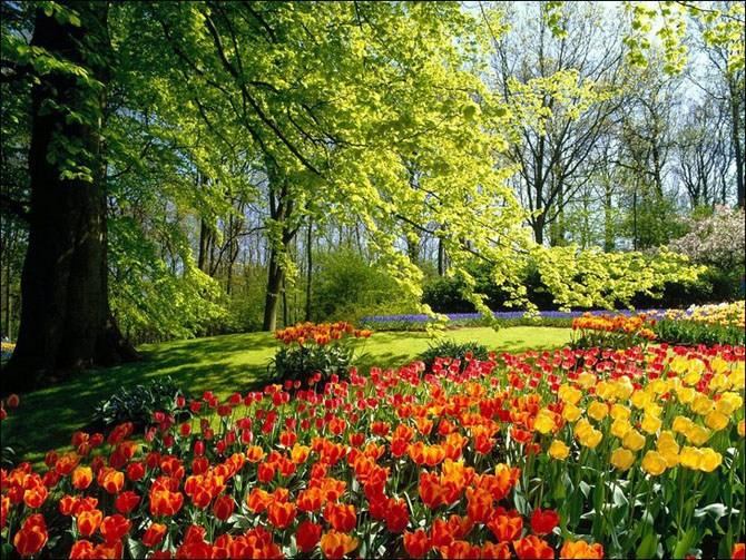 красивые места весной