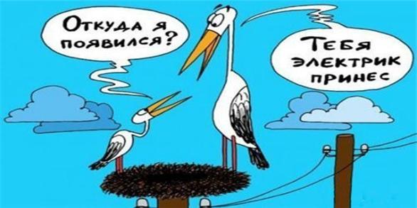 анекдоты, карикатуры
