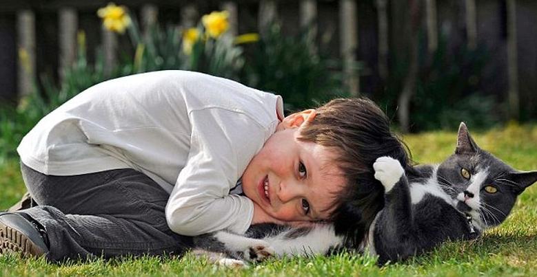 кот помогает мальчику