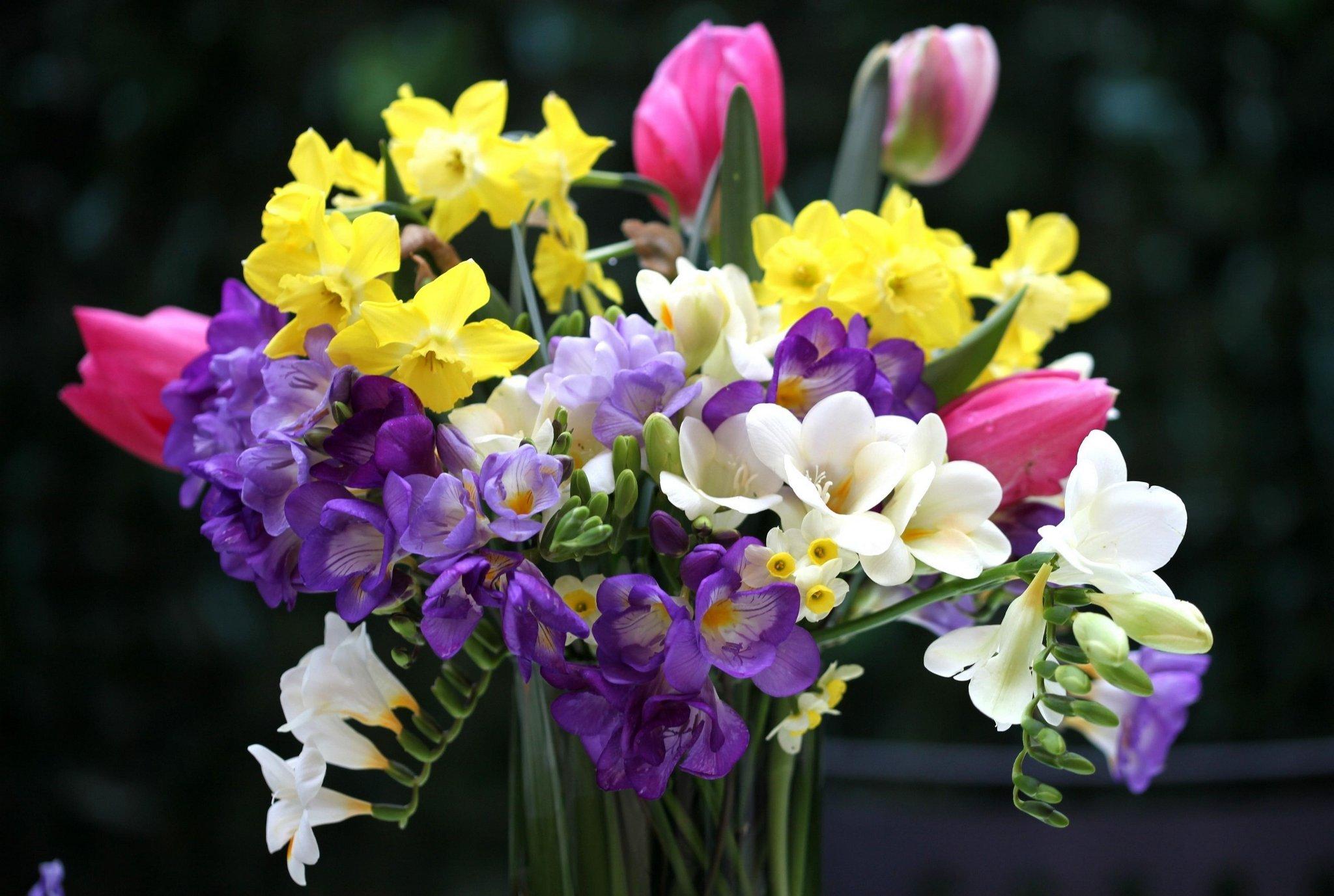 весенние цветы на 8 марта