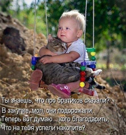 забавные фото детей и кошек