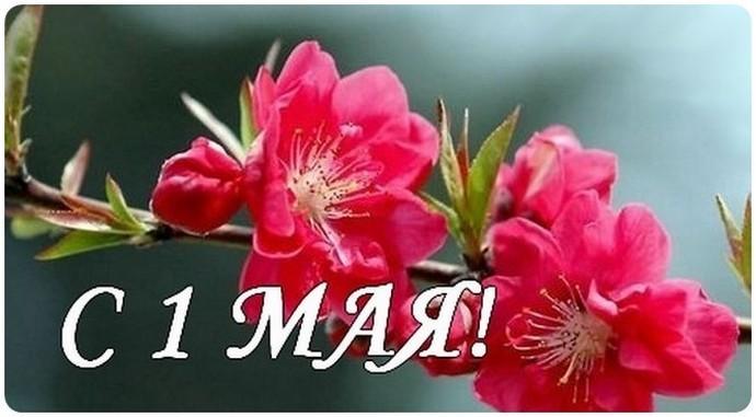 Картинки по запросу фото с поздравлением 1 мая