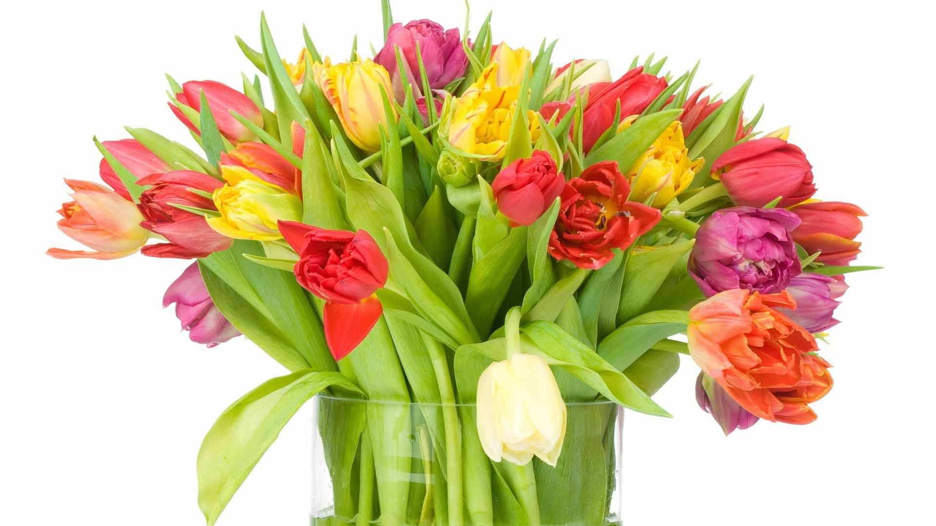 большой весенний букет тюльпанов