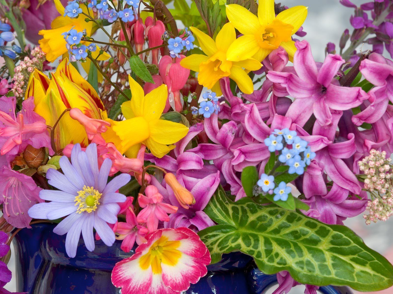 красивый весенний букет цветов