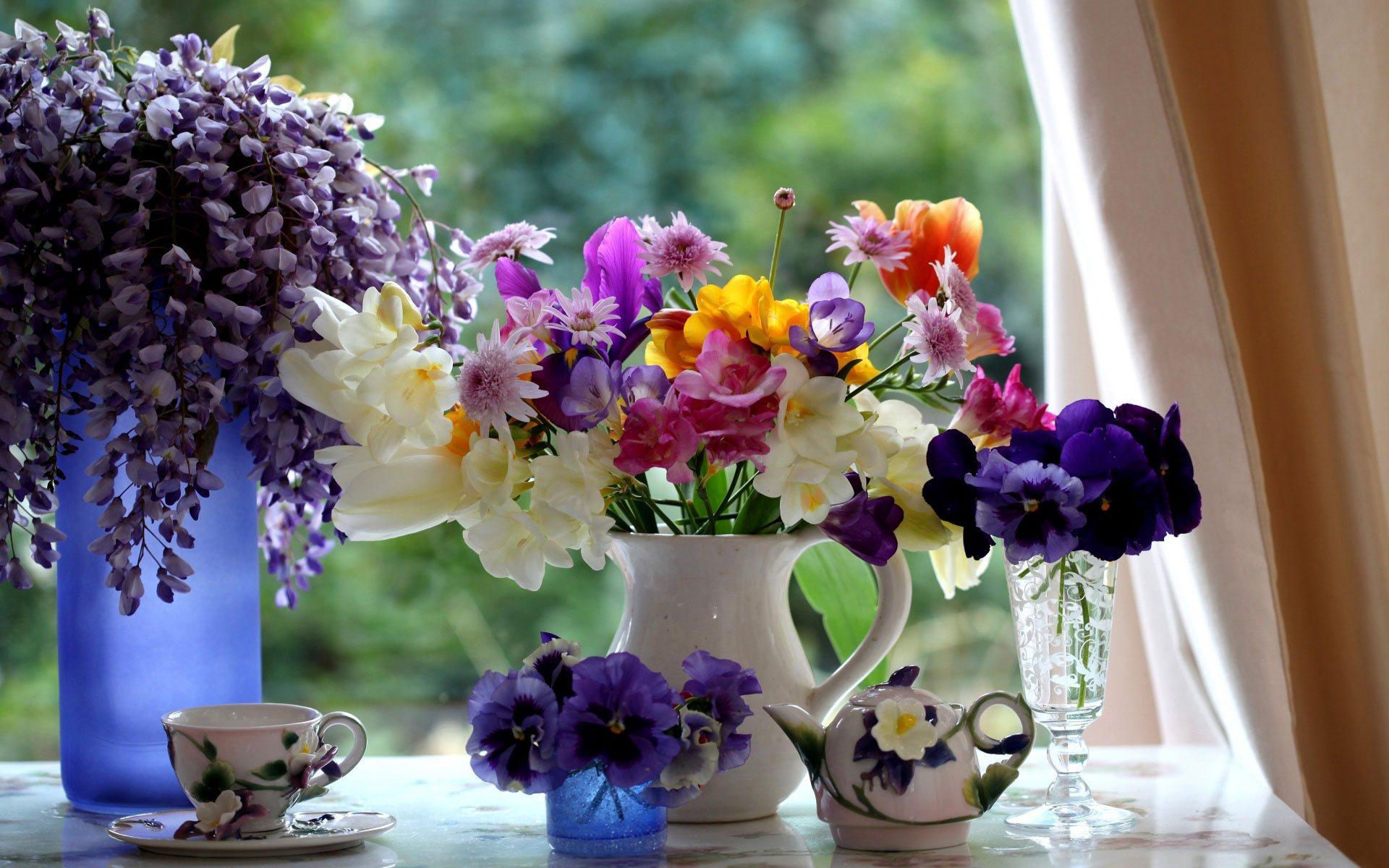 красивые цветы летом