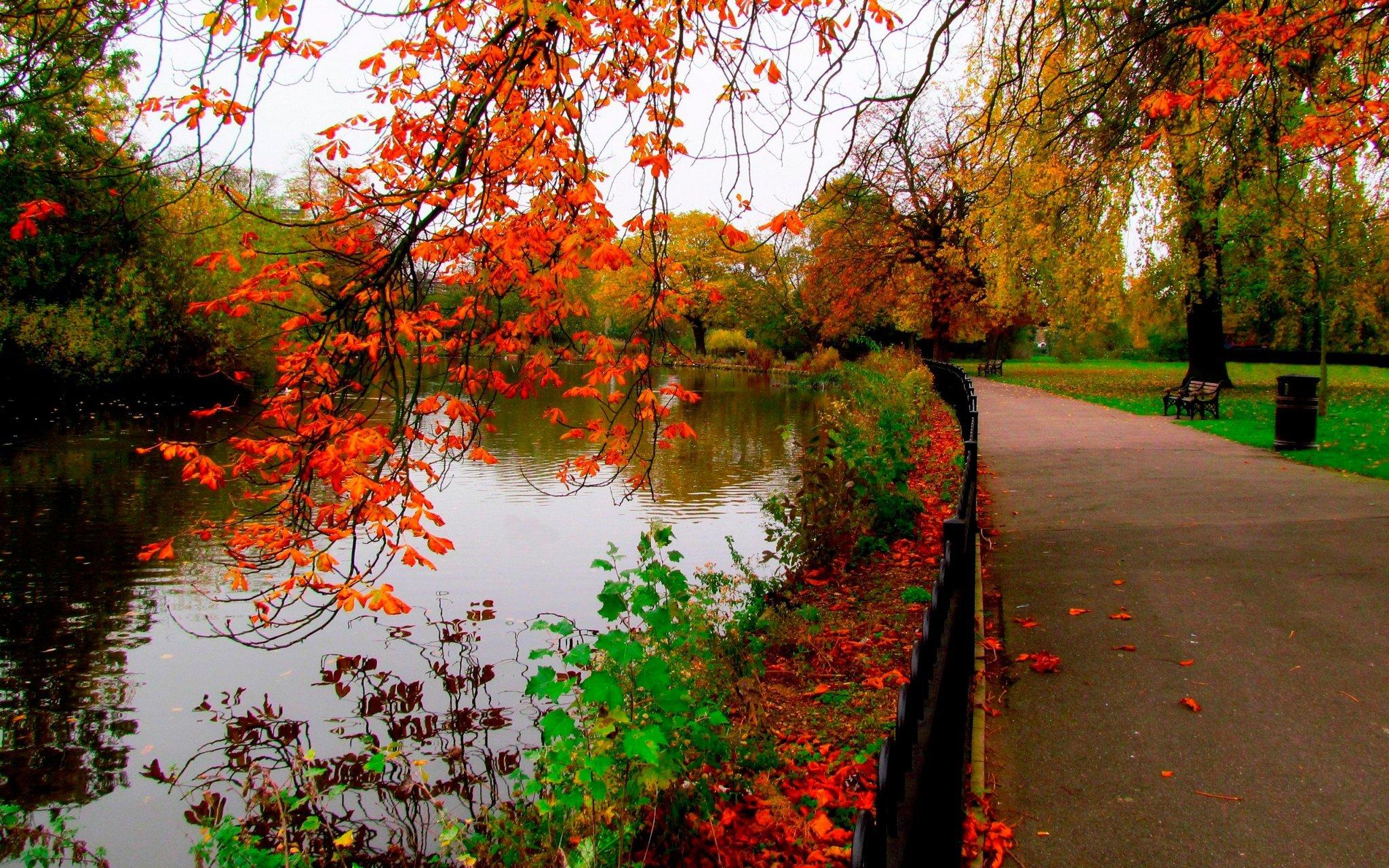 красивые места Киев осень