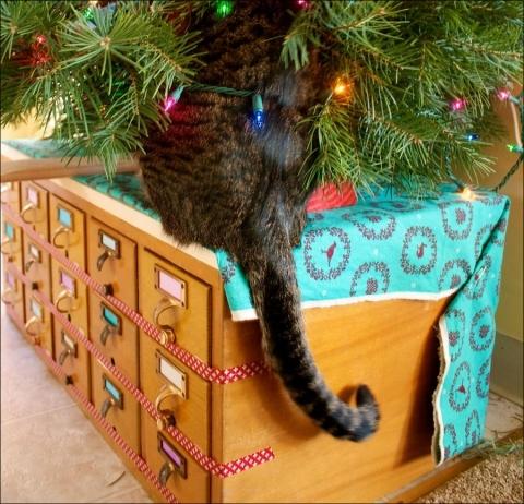 кот ищет подарок под елкой