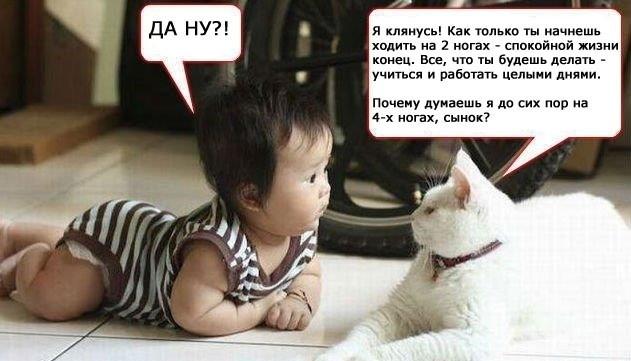 кот и малыш