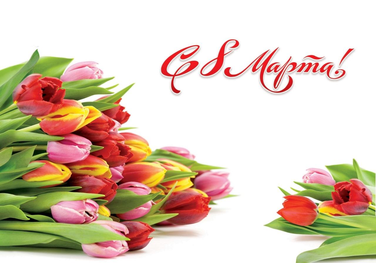 Картинки по запросу фото цветов к 8 марта