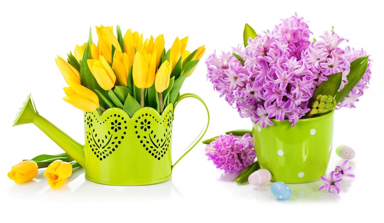 красивые цветы +на 8 марта