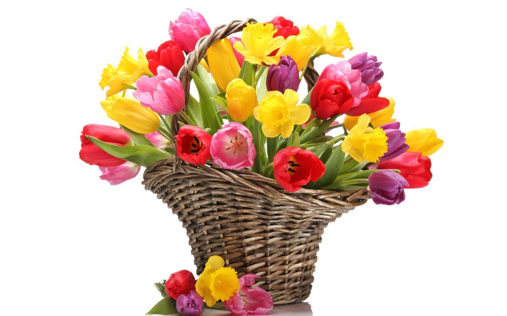 цветы марта картинки 8 скачать