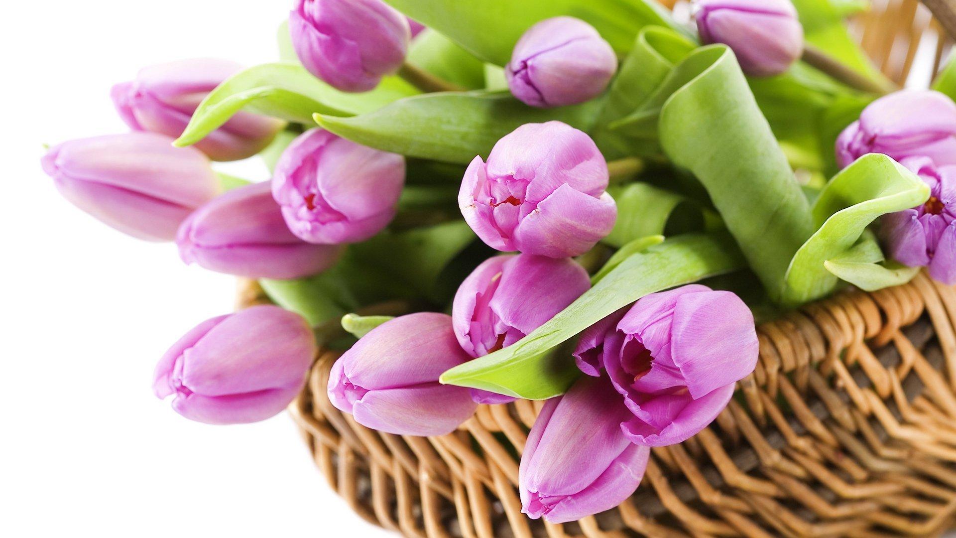 стихи поздравления +с 8 марта