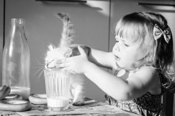 кот +и ребенок +в доме
