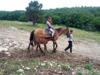 поездка на лошадях
