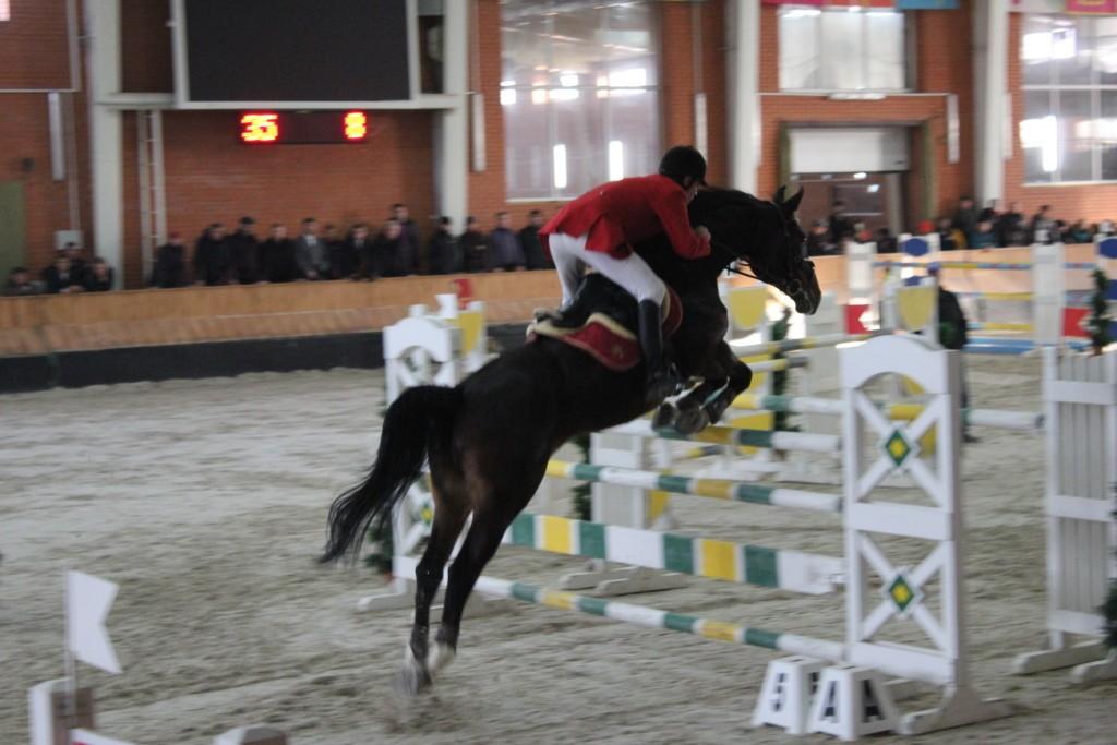 лошадь прыгает