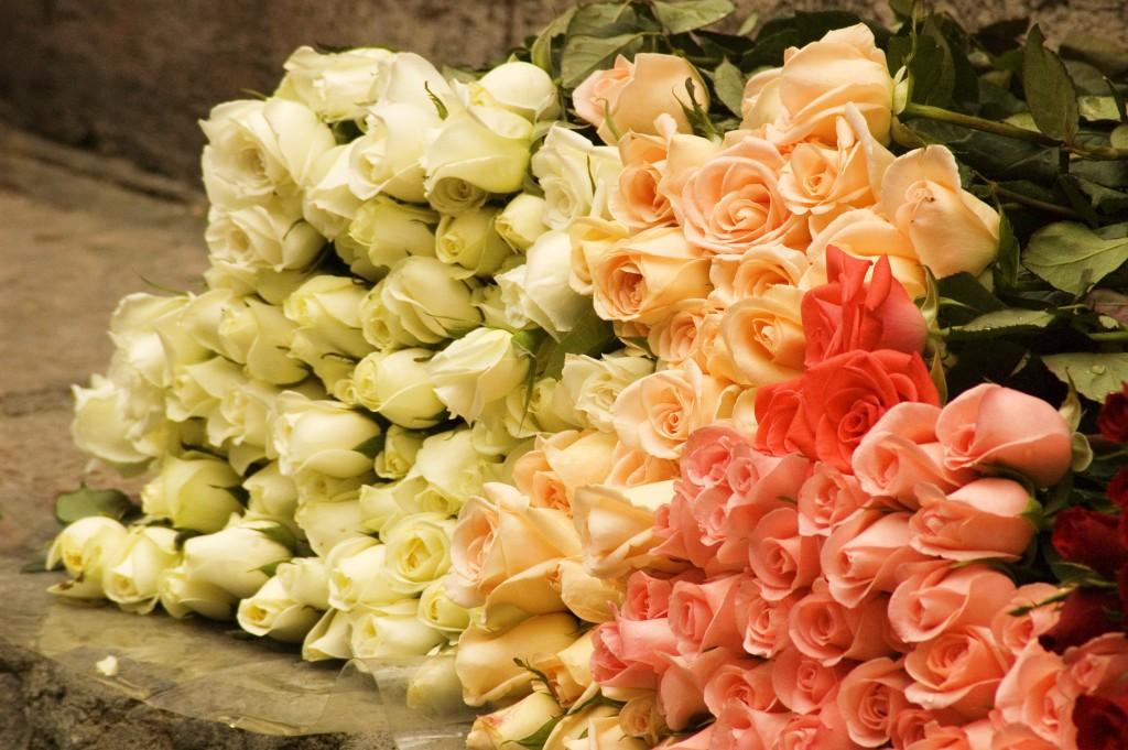 цветы большой букет роз