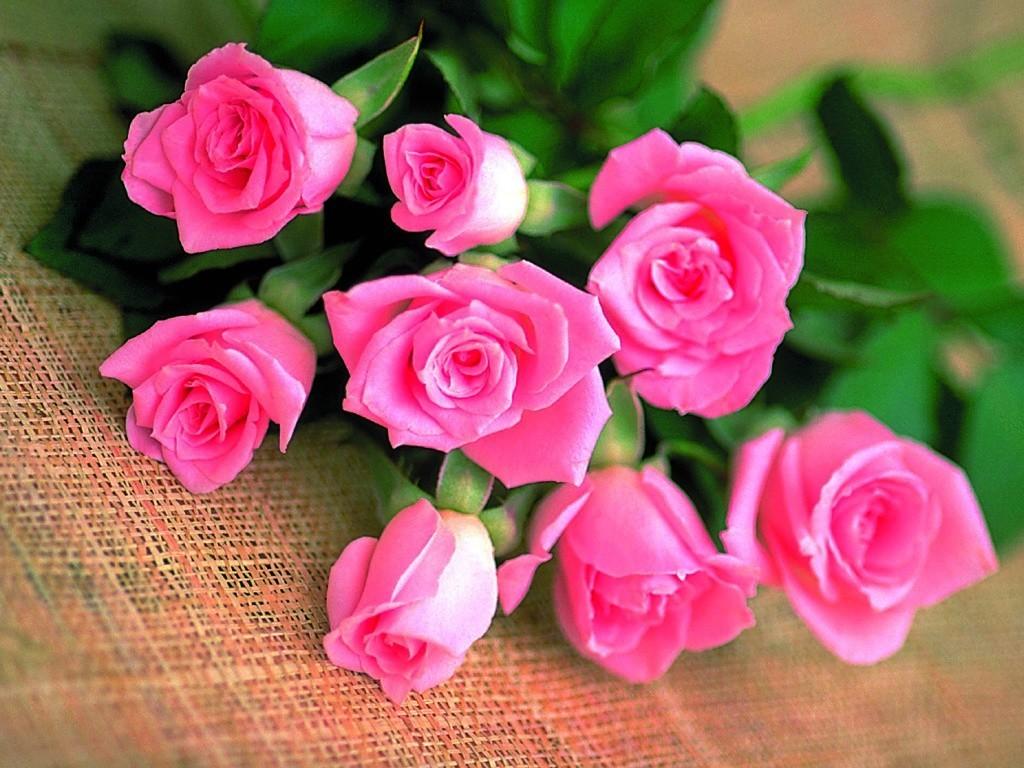 большие букеты цветов купить