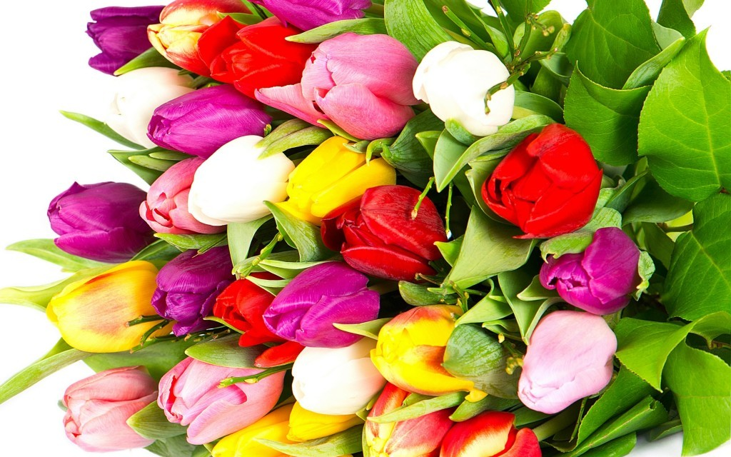 цветы фото букеты большие