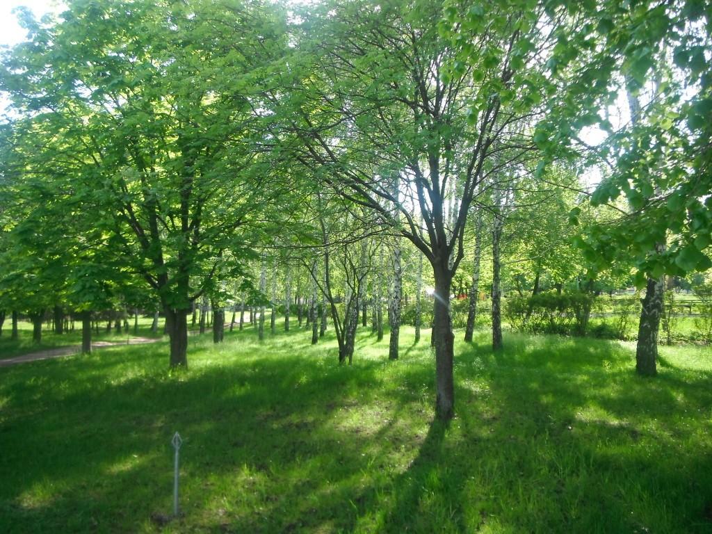 парк Мира