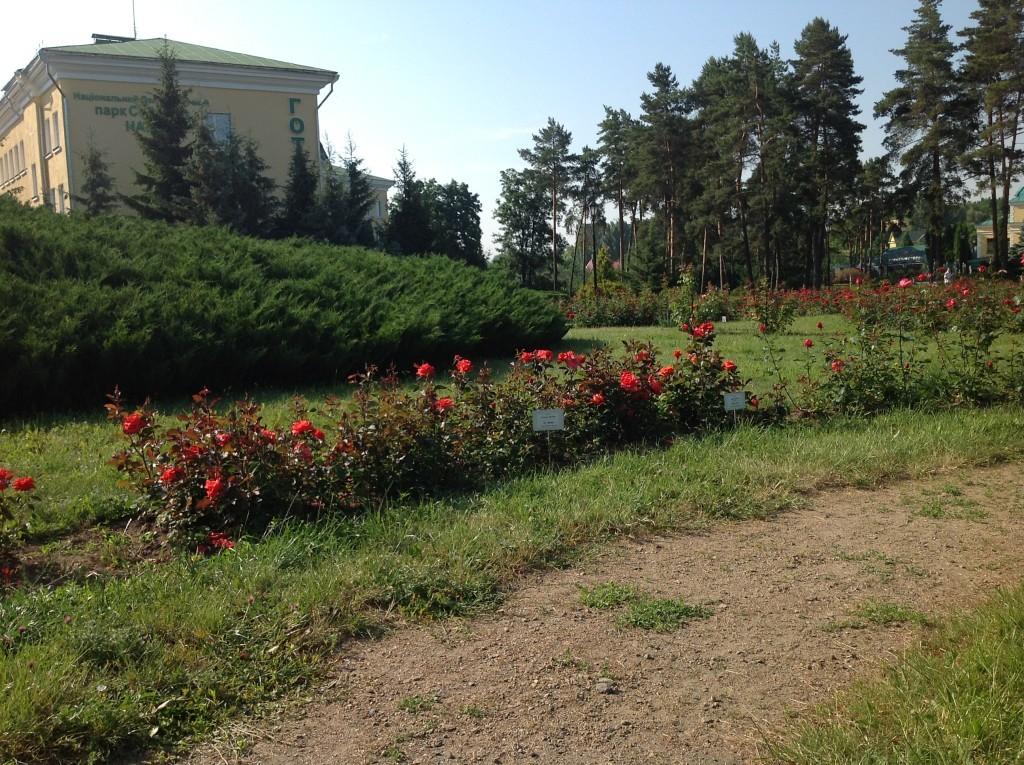 Софиевский парк Умань