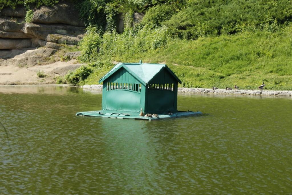 домик для уток