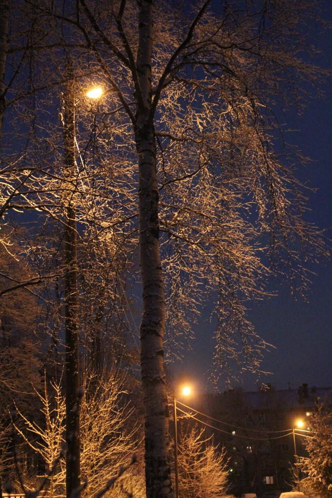 снег, зима, Петрозаводск