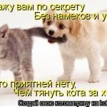 kotomatrix_34