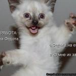 sciDxSysnYI