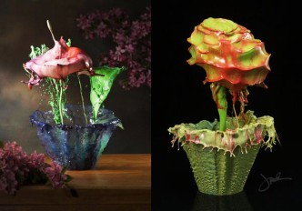 красивые жидкие цветы
