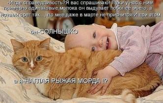 смешные фото котов и детей