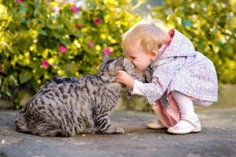 кот любит ребенка