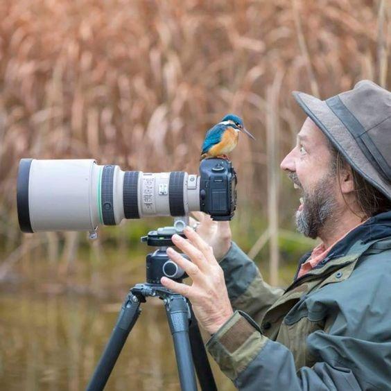 фотограф и птица